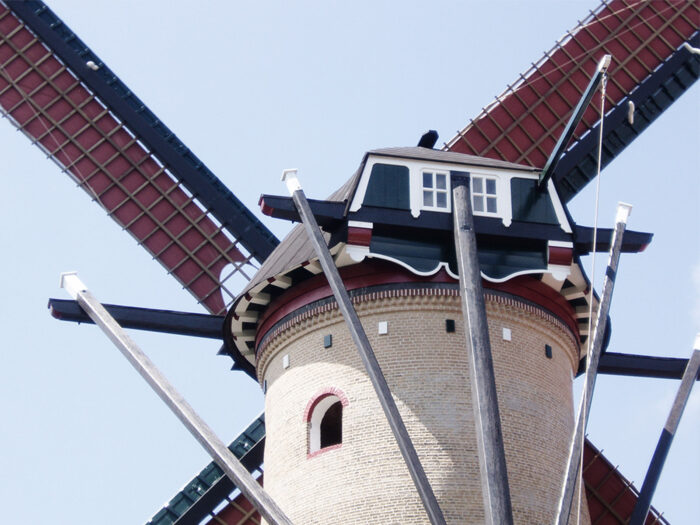 restauratie molen tholen